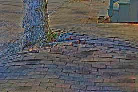 Damaged Brick Paving